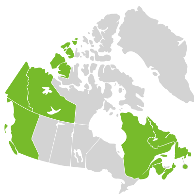 Distribution: Sanguisorba Linnaeus