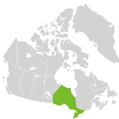 Distribution: Dichanthelium commonsianum (Ashe) Freckmann