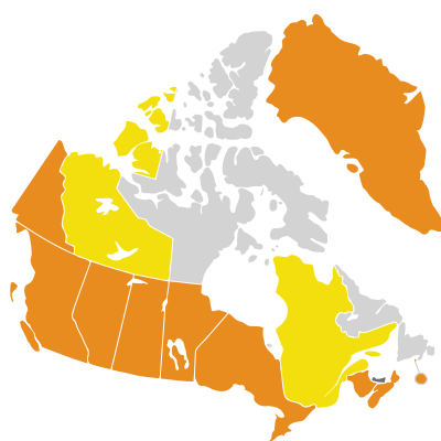 Distribution: Lepidium sativum Linnaeus