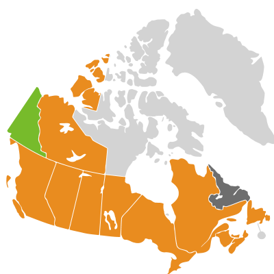 Distribution: Caryophylleae
