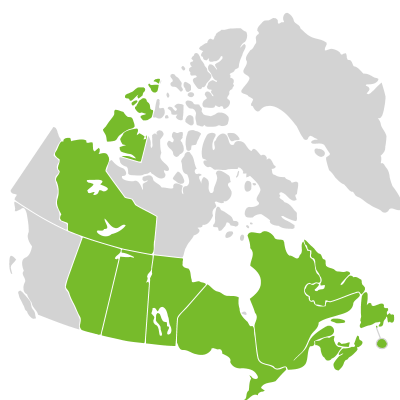 Distribution: Hudsonieae