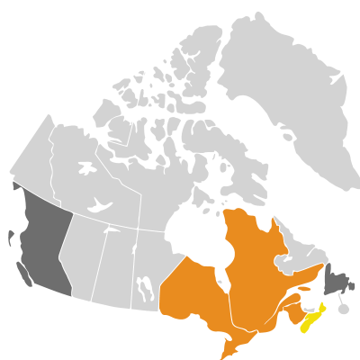Distribution: Primula veris Linnaeus