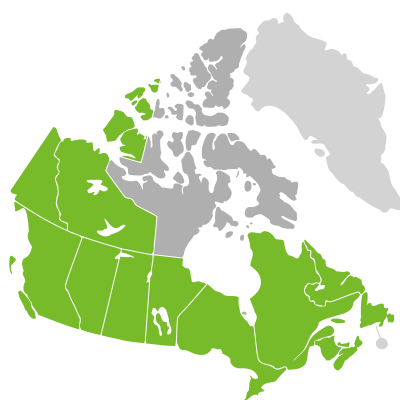 Distribution: Calla Linnaeus