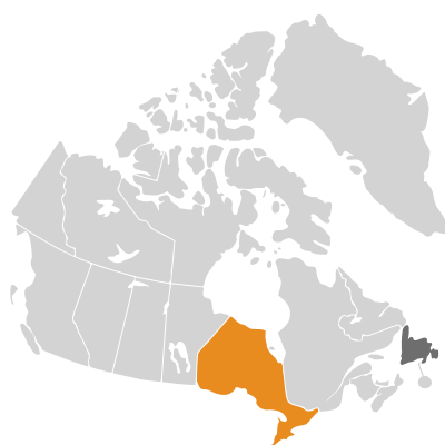 Distribution: Crocus Linnaeus
